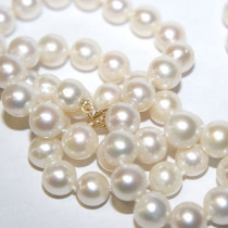 New Pearl Gold Necklace